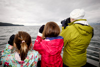 Whale Watching in Auke Bay
